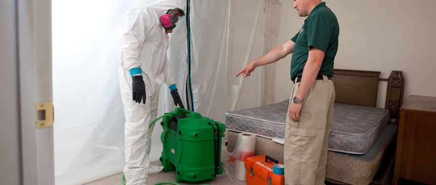 Belleville, IL mold removal process
